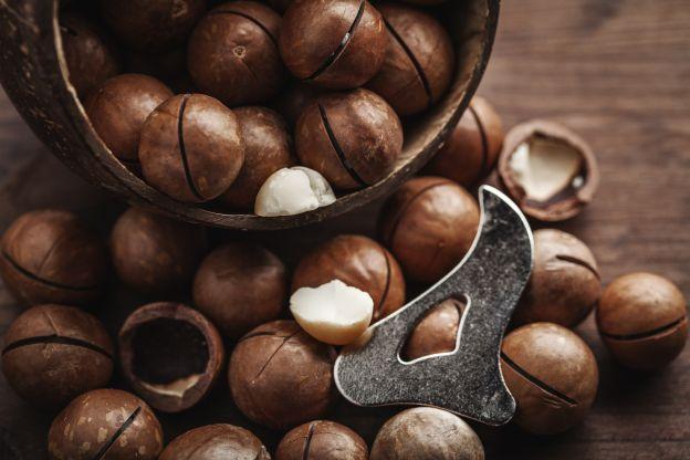 Le noci di macadamia e le loro incredibili propriet for Pianta di noci