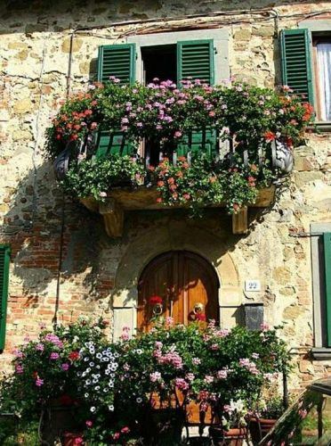Balcone fiorito in ogni stagione ecco i fiori perenni for Fiori balcone perenni