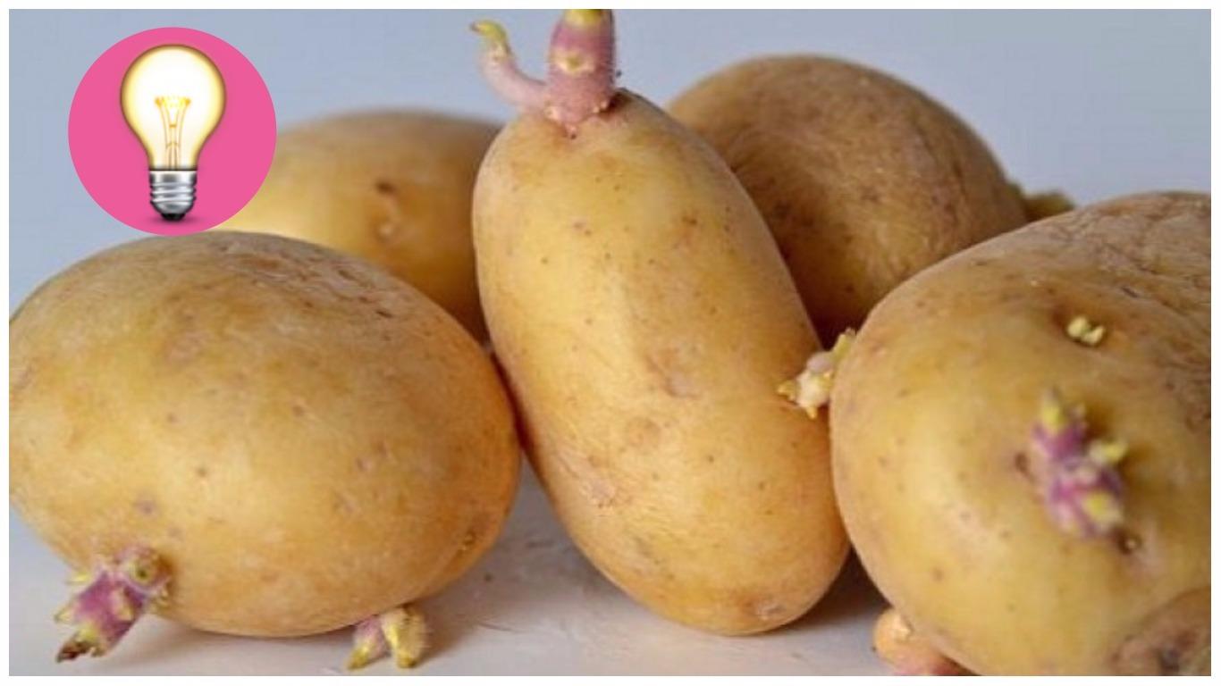 metodo naturale per non far germogliare le patate sentirsi gonfio e malato dopo i pasti