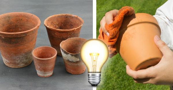 Come Pulire Le Piastrelle Di Terracotta : Come lavare i vasi in terracotta assorbono tutto e questa formula